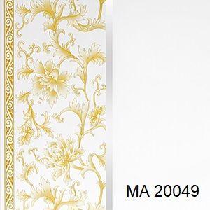 MA 20049