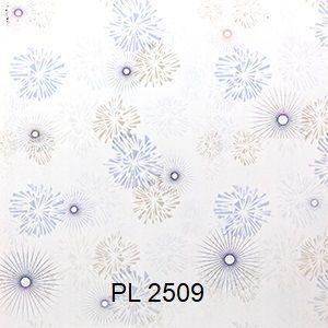 PL 2509